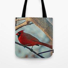 Pretty Male Cardinal Tote Bag