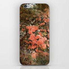Rose 180 iPhone Skin