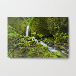 III - Remote waterfall in lush rainforest, Columbia River Gorge, Oregon, USA Metal Print
