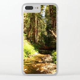 A Muir Woods Scene Clear iPhone Case