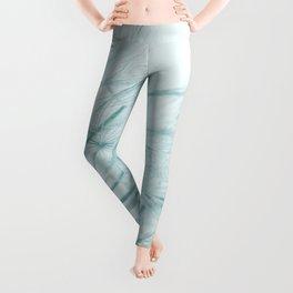Dandelion In Blue Leggings