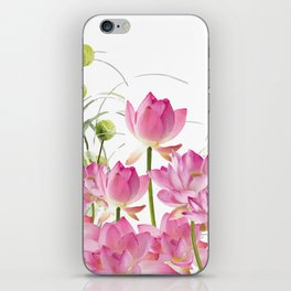 Field of Lotos Flowers iPhone Skin