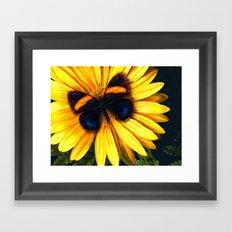 Butterfly on yellow Framed Art Print