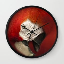 Parrot Portrait Wall Clock