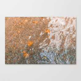 Water and foil Canvas Print
