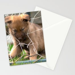 #Goalkeeper of the #new #generation #little #malinois #puppy its #angry Stationery Cards