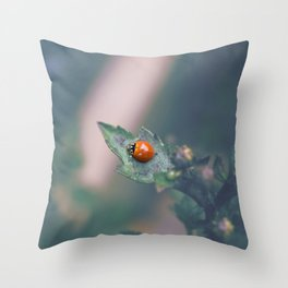 Coccinellidae Throw Pillow