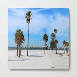 A Florida Winterday Metal Print