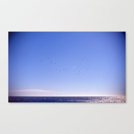 Birds Blue Sky Constellation Canvas Print