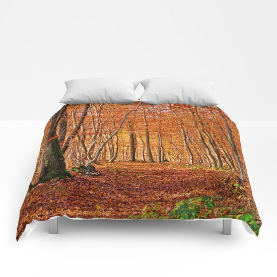 Autumn in the forest Comforters
