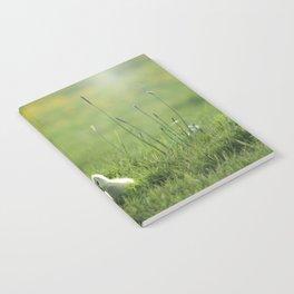 baby goose1 Notebook
