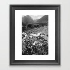 Monochrome Yosemite Blooms Framed Art Print