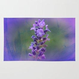 Sweet Lavender Rug