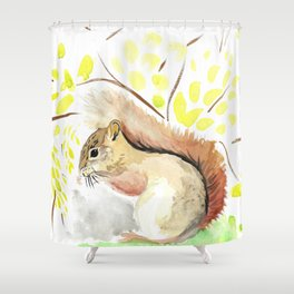 Brown Squirrel painting kids room Shower Curtain