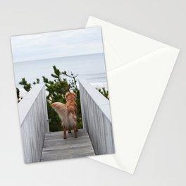 Beach Dog Stationery Cards