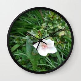 soft pink flower Wall Clock