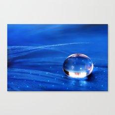 Blue Star Drop Canvas Print