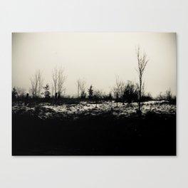 Desolation 2 Canvas Print