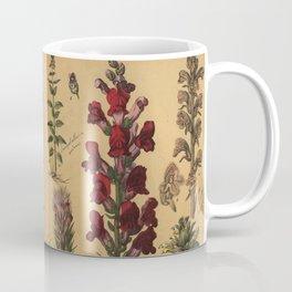 Naturgeschichte des Pflanzenreichs, Eßlingen 1870 Coffee Mug