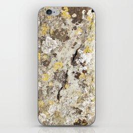 Lichen on The Rollright Stones iPhone Skin