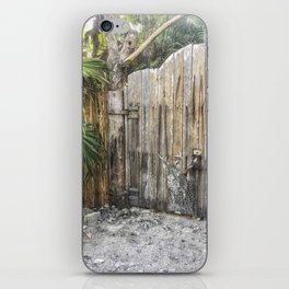 Street Art in Tulum iPhone Skin