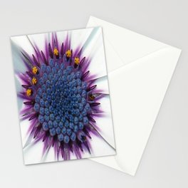 Stunning African Daisy Tropical Flower Macro Stationery Cards