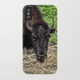 The Bison Stare iPhone Case