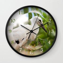 Orphaned one White Stork Wall Clock