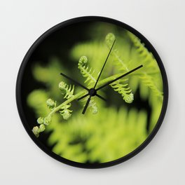 Unfurling Fern Wall Clock