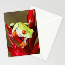 Red Eyed Tree Frog On Bromeliad Stationery Cards
