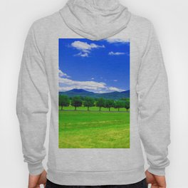 Moving Fast Hoody