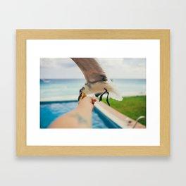 Larus Framed Art Print