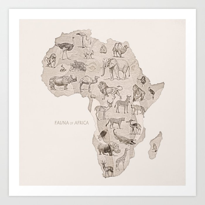 Africa (Fauna) Art Print