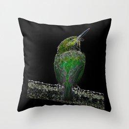 Tody Bird digital art Throw Pillow