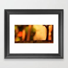 Bonsai Disco Framed Art Print