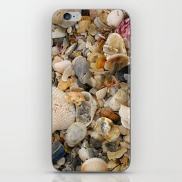 Nature's Seashell Collage iPhone Skin
