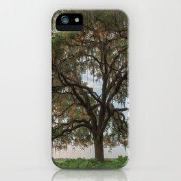 Southern Morning iPhone Case