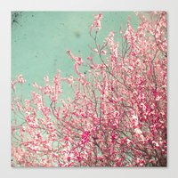 blossom Canvas Prints featuring Blossom by Cassia Beck