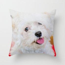Emma - Bichon Frise / Shih Tzu Throw Pillow
