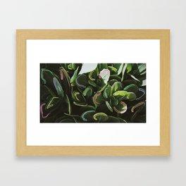 Feelings in the Garden Framed Art Print