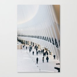The Oculus Canvas Print