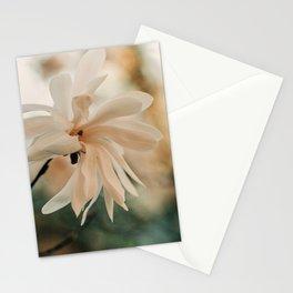 Magnolia Sky Stationery Cards