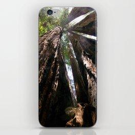 Up Close & Personal iPhone Skin
