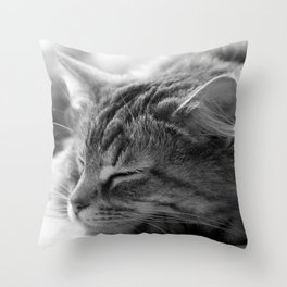 Sleeping cat, cat photography, black & white. Throw Pillow