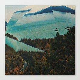 SŸNK Canvas Print