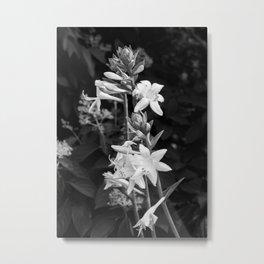 Dramatic Flowers B&W Metal Print