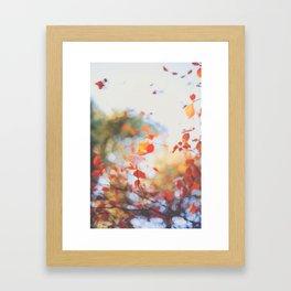 . Orange Leaves . Framed Art Print