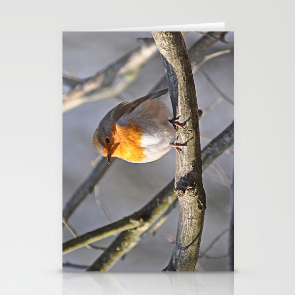Fluffy Robin Redbreast Stationery Cards by Pirminnohr (CRD915575) photo
