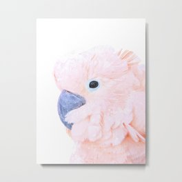 Pink Cockatoo Portrait Metal Print