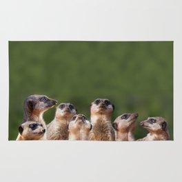 Meerkat Mob Rug